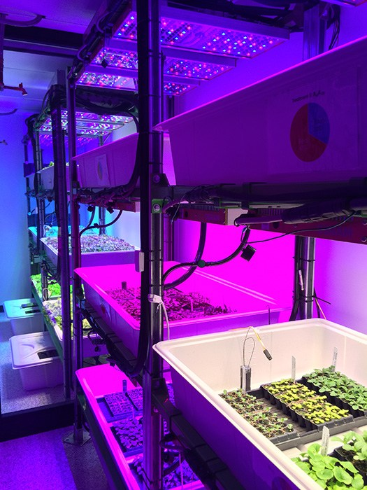 Researchers at Michigan State will study the impact of adding far red wavebands to the light spectrum on floriculture crops.