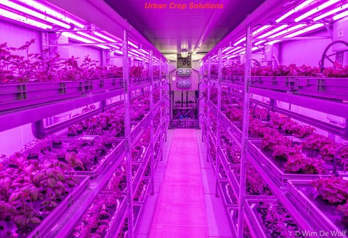Source:   The Future of Container Farming & Controlled-Environment Agriculture