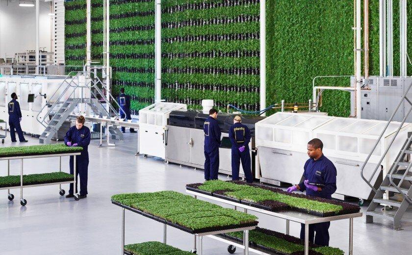 Top 26 Vertical Farming Companies Igrow