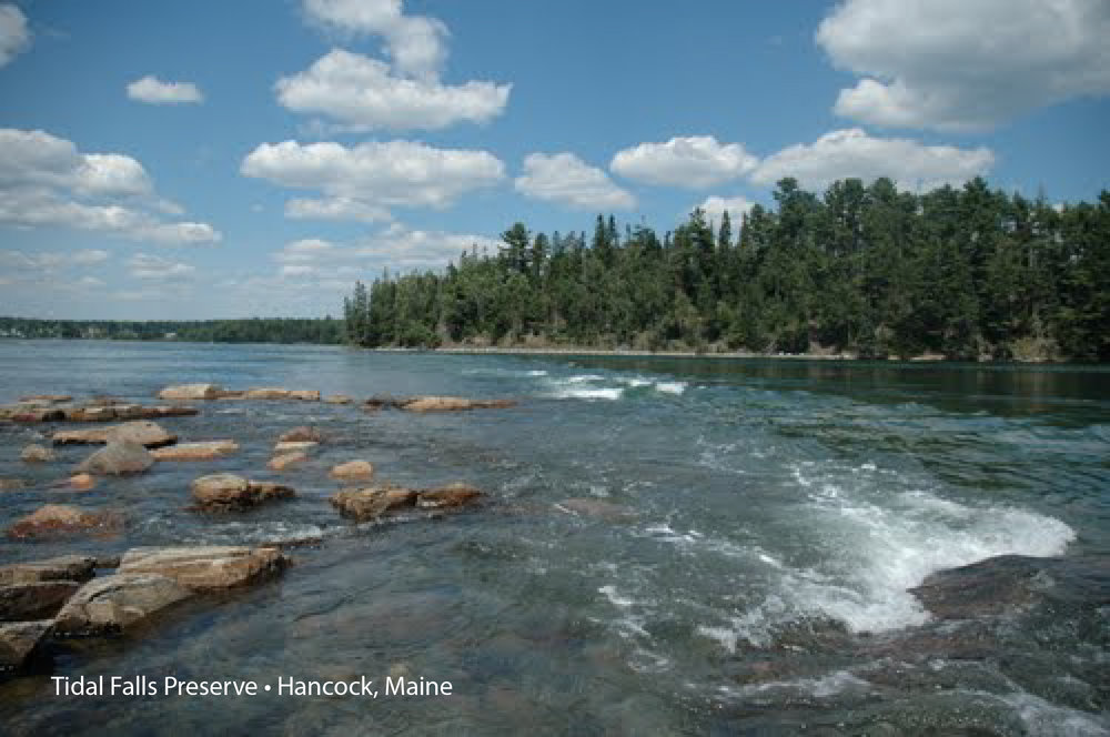 tidal-falls-preserve2.jpg