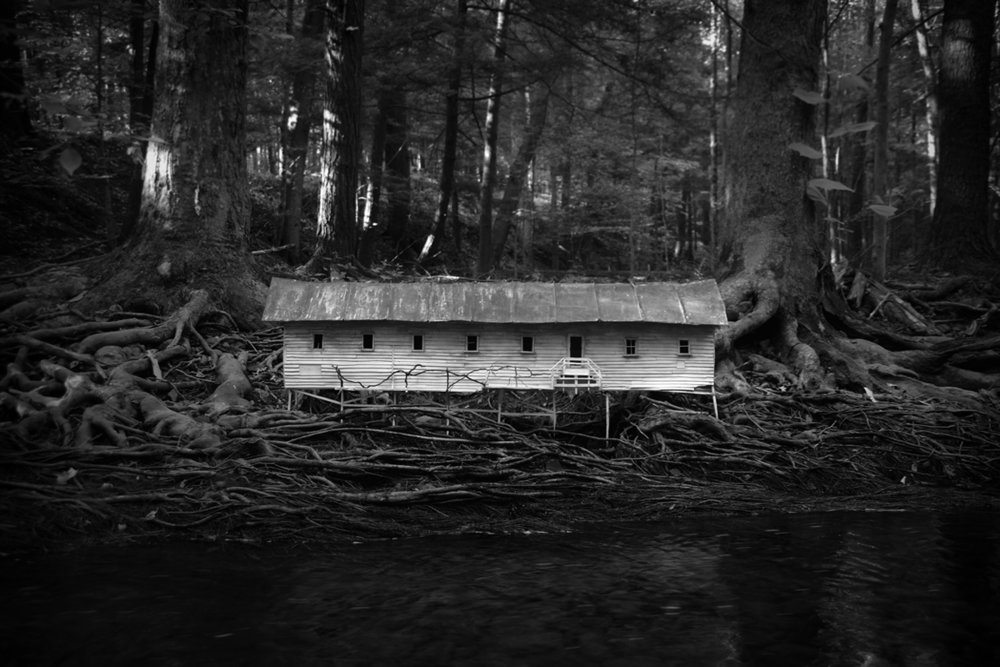 Duckweed Palace, Photograph/Sculpture, 2006