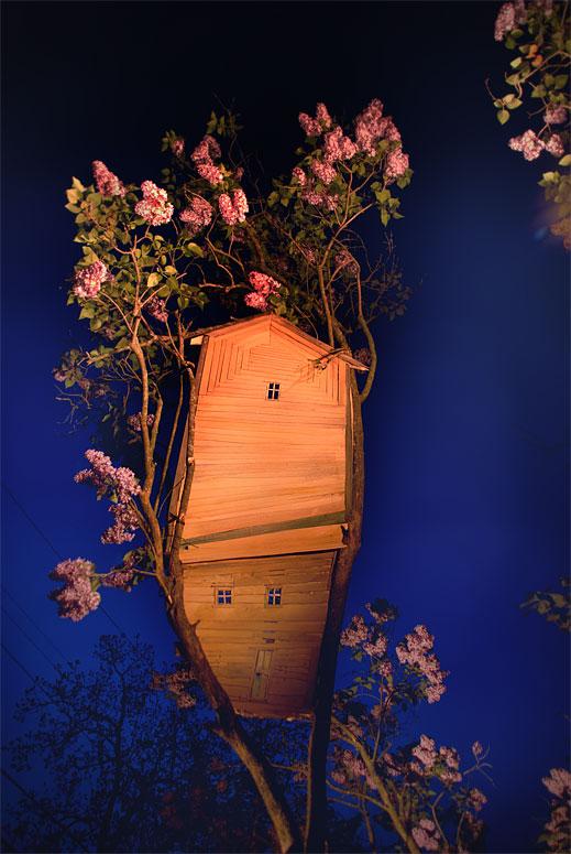 Lilac Blue, Photograph/Sculpture, 2010