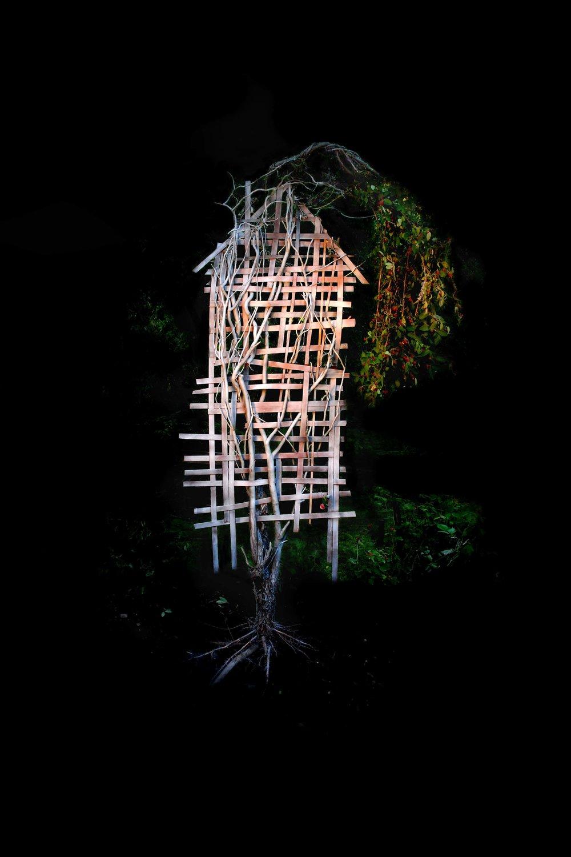 Lament, Photograph/Sculpture, 2008
