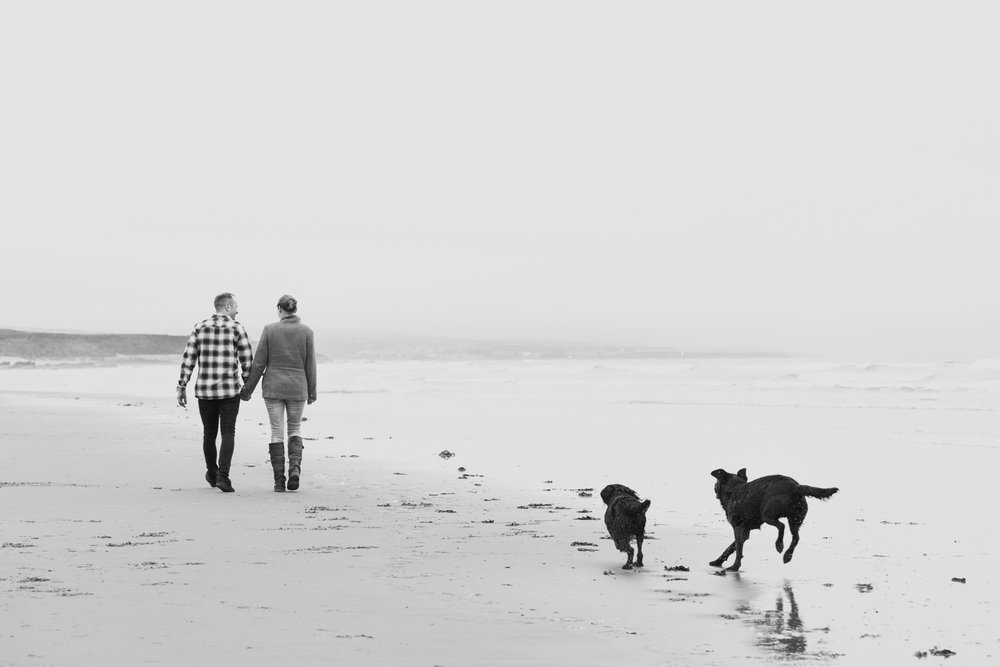 Couple hand in hand walking black dogs on the beach