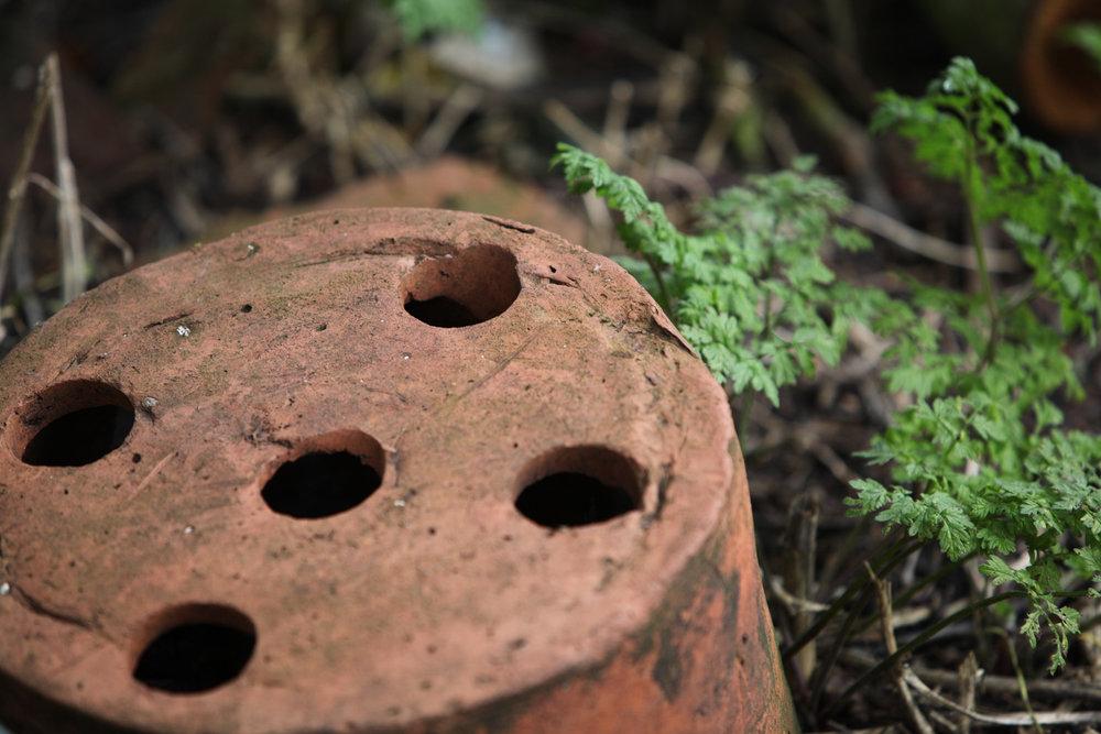 PICTORIAL_BERWICK_heritage-open-days-cherith-ravensdowne-berwick-photographer-historic-0331.jpg