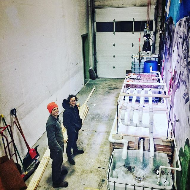 Stopped by #echoflex to check on the progress of the aquaponics system being built by Jonathan of Sea to Sky Aquaponics. Looks like a great set up and would love to integrate a system into a tiny home! #aquaponics #squamish #tinyhome #squamishisawesome