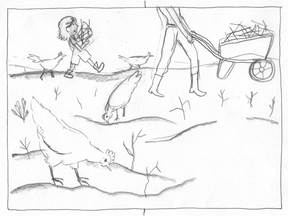13-garden-sketch.jpg