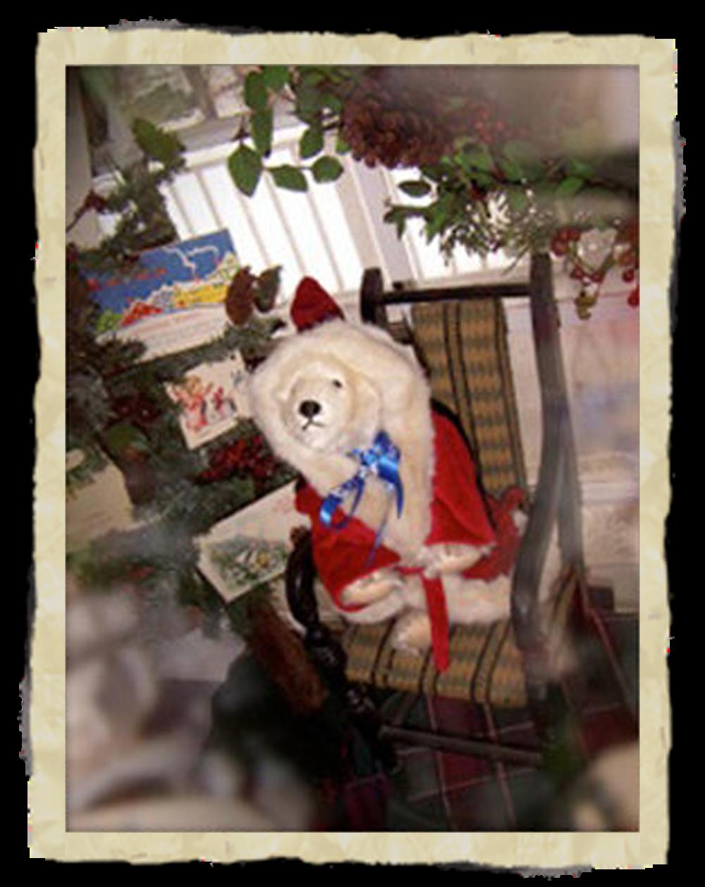 Christmas Polar -
