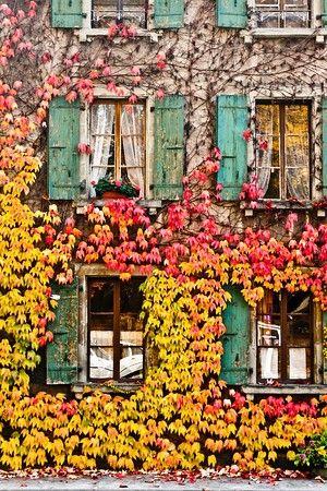 October Mood 2.jpg