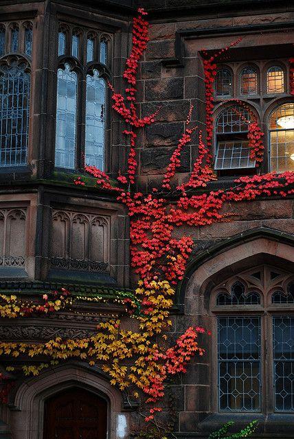 October Mood 8.jpg