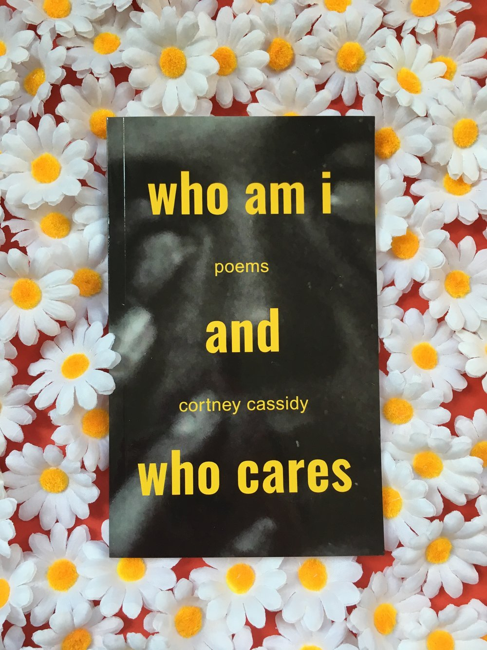 """Self-published poetry collection about secret eating, McDonald's, and living in New York. 4x6"""", 100 pages, 2017.   This edition is out of print"""