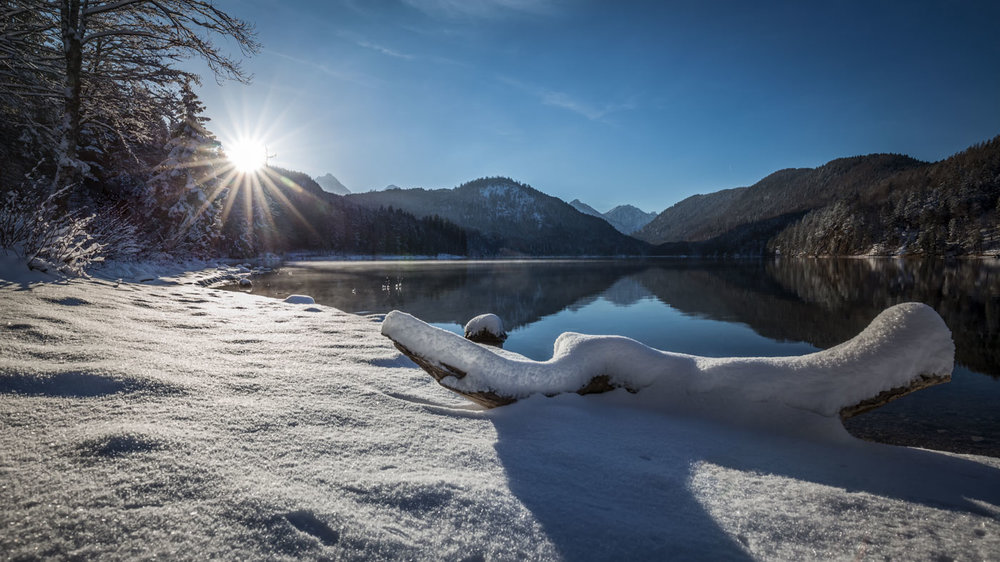 Low Perspective: The Alpsee in Schwangau.