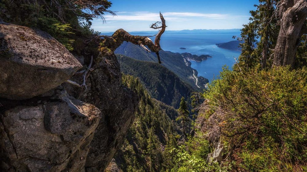 Panorama View: Cypress Mountain