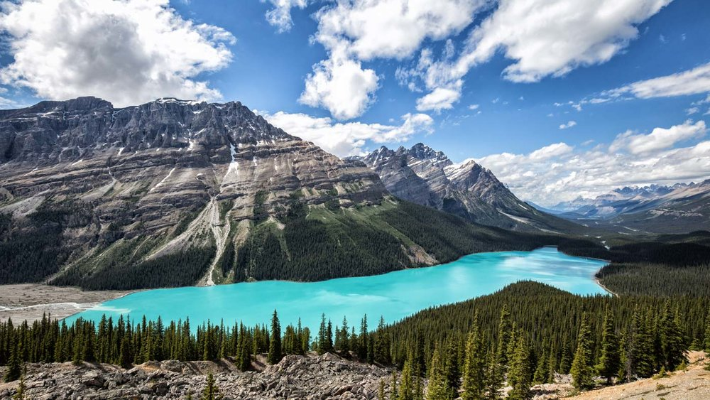 Bow Summit Lookout: Panorama of the surreal Peyto Lake