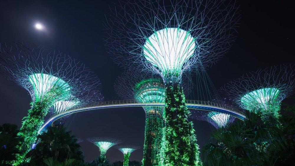 Glowing Trees: Gardens by the Bay