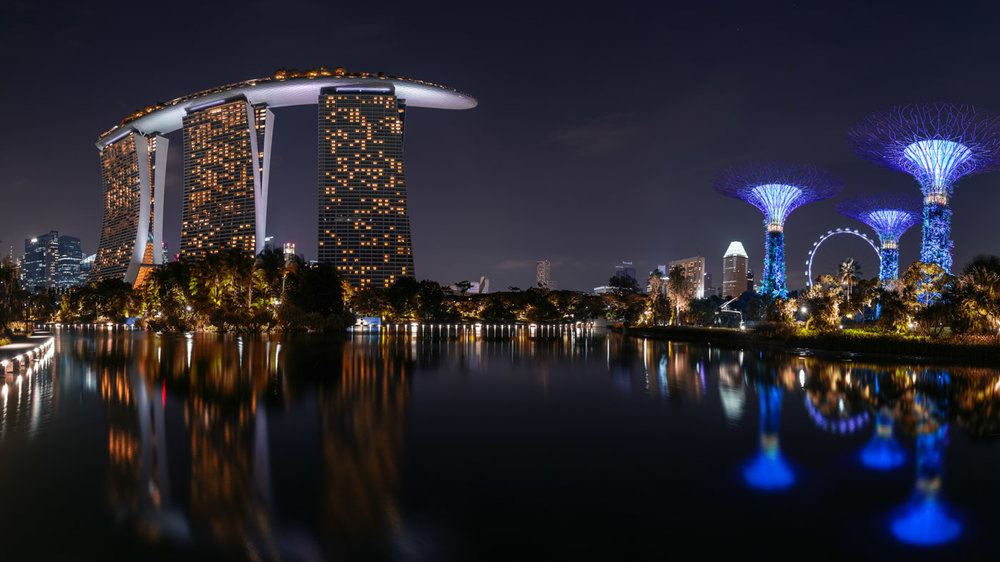 Perfect View: Gardens by the Bay & Marina Bay Sands.