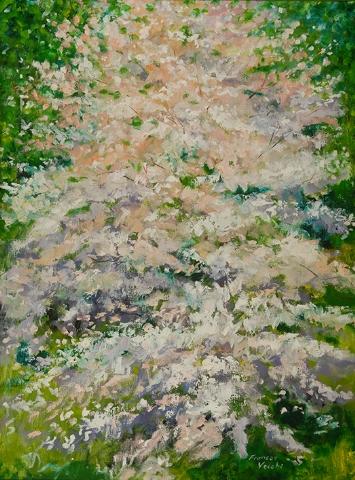 03 Dogwood Blossoms.jpg