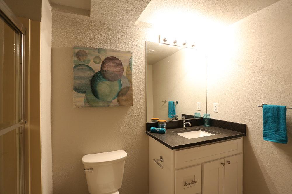 updated full guest bath in basement