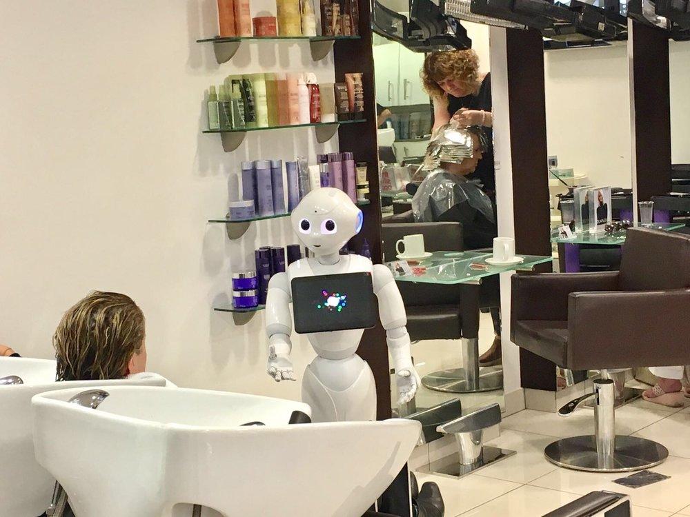 Robot Host