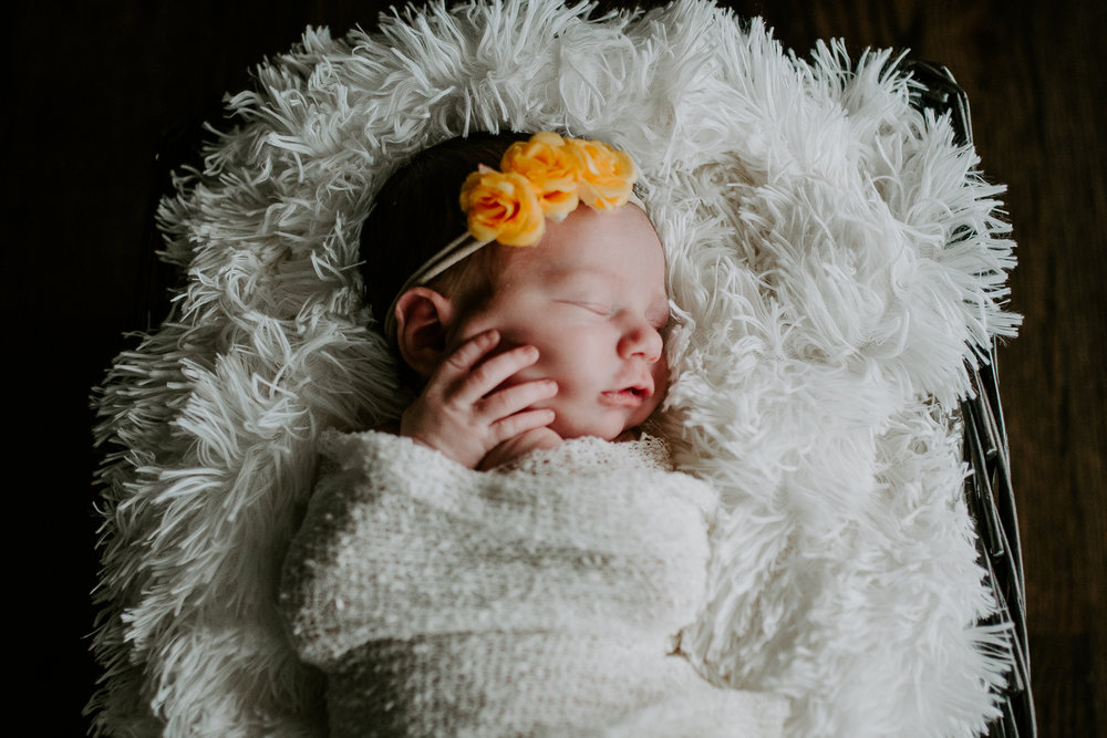 Baby Evey (1 of 1)-6.jpg