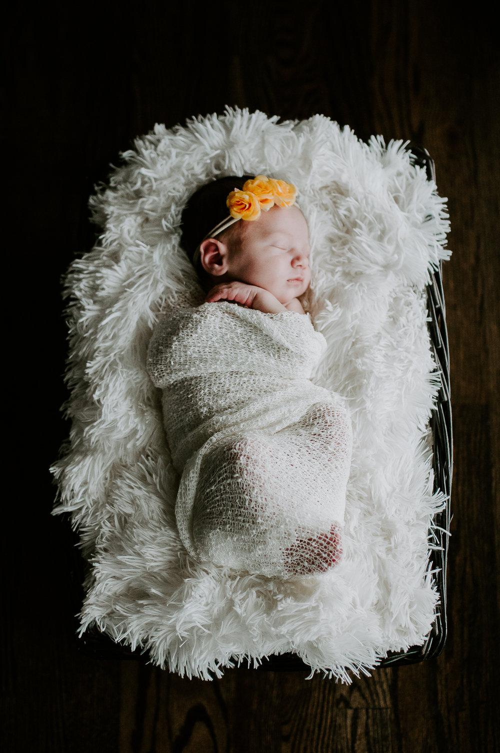 Baby Evey (1 of 1)-7.jpg