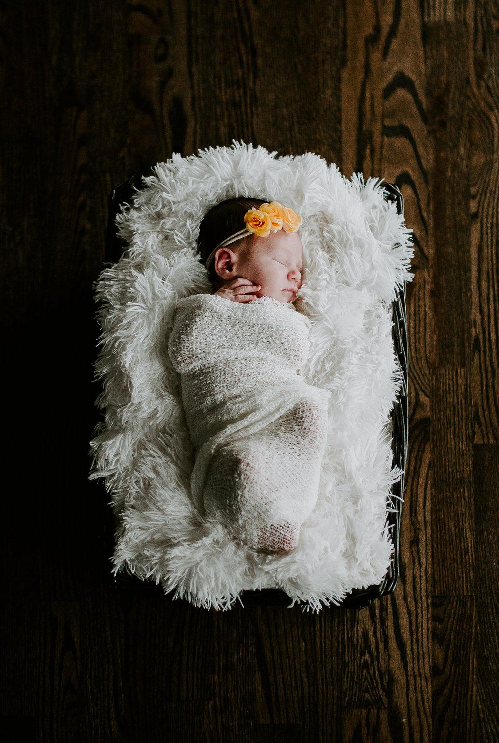 Baby Evey (1 of 1).jpg