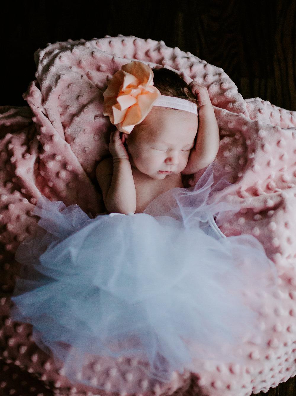 Baby Evey (1 of 1)-71.jpg