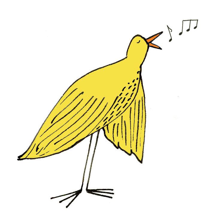 NEW BIRD JOY B.jpg