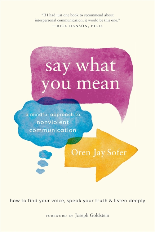 say what you mean jacket cover.jpg