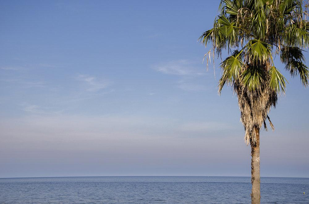Frente al Mar.jpg
