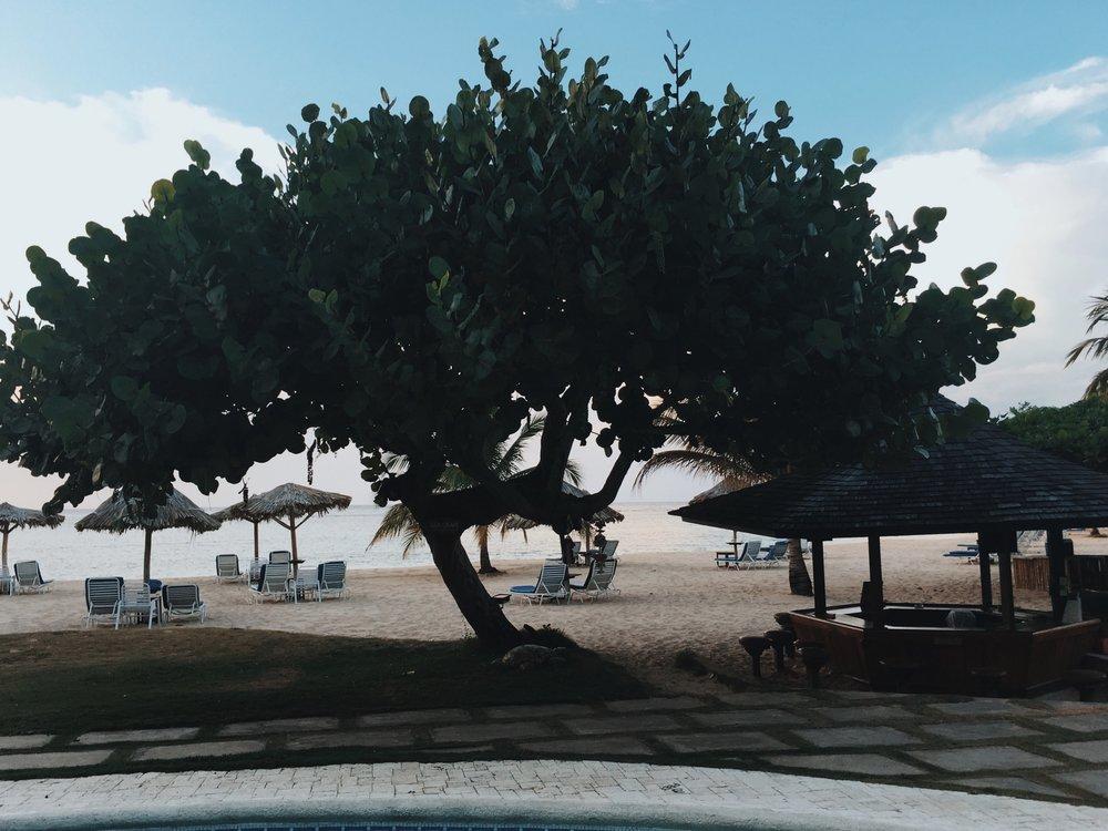 beach view / Jamaica Inn