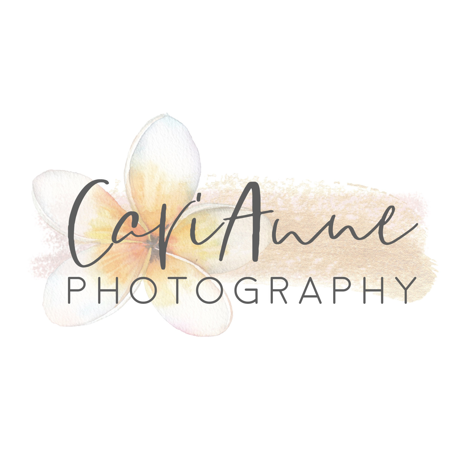CariAnne Photograpy