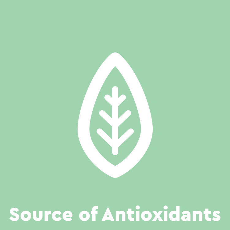 antioxidant-icon.png