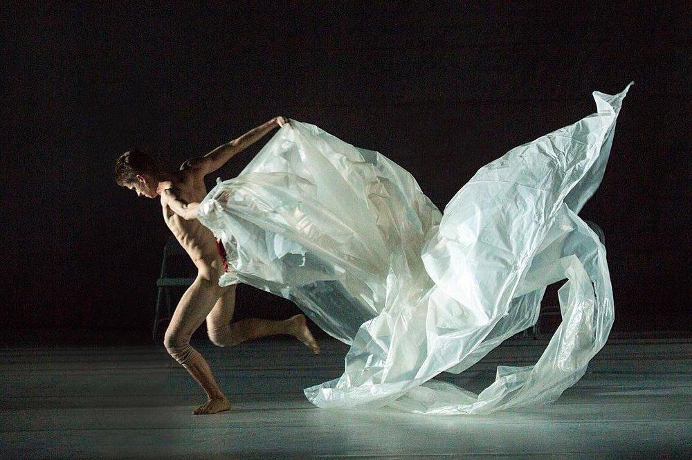 W H A L E Choreography / Andrea Miller Joyce Theater, NY