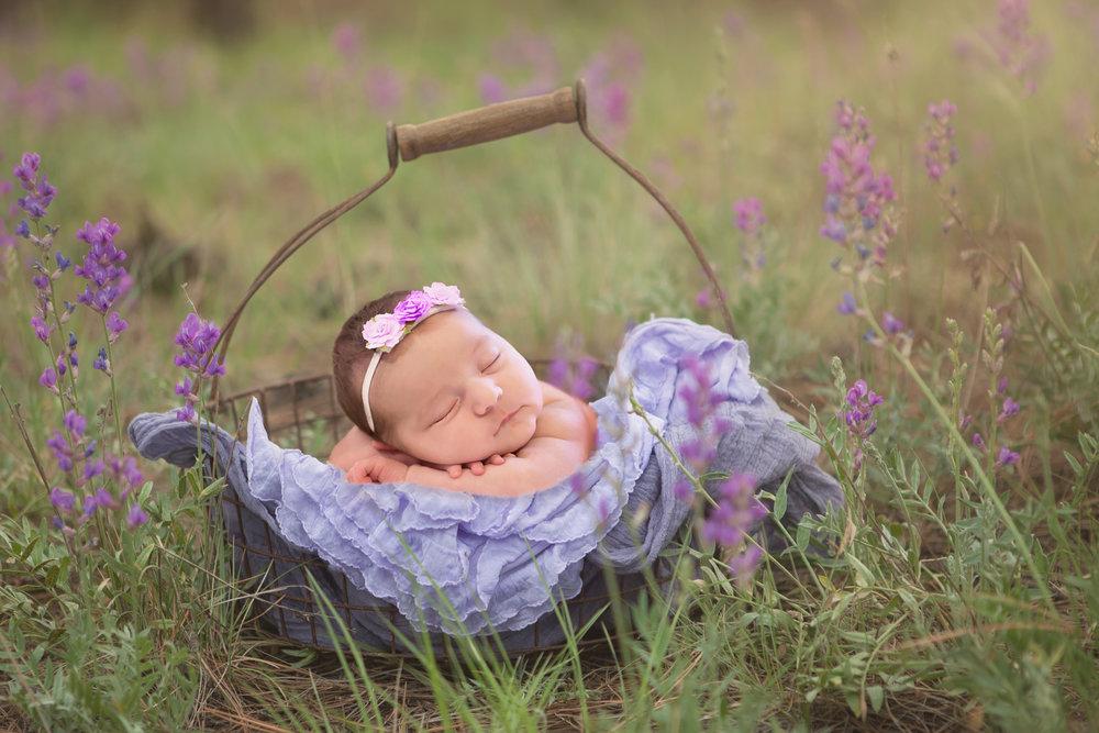 Hope+Newborn_Print.jpg