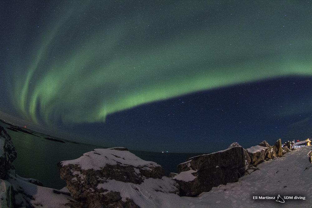 auroras 1.jpg