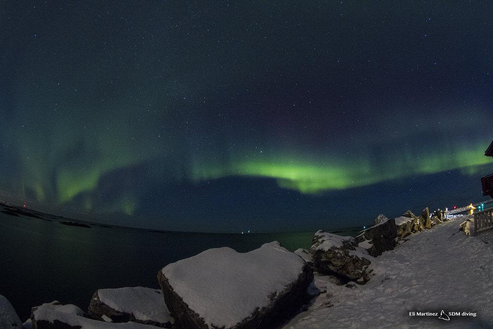 auroras 4.jpg