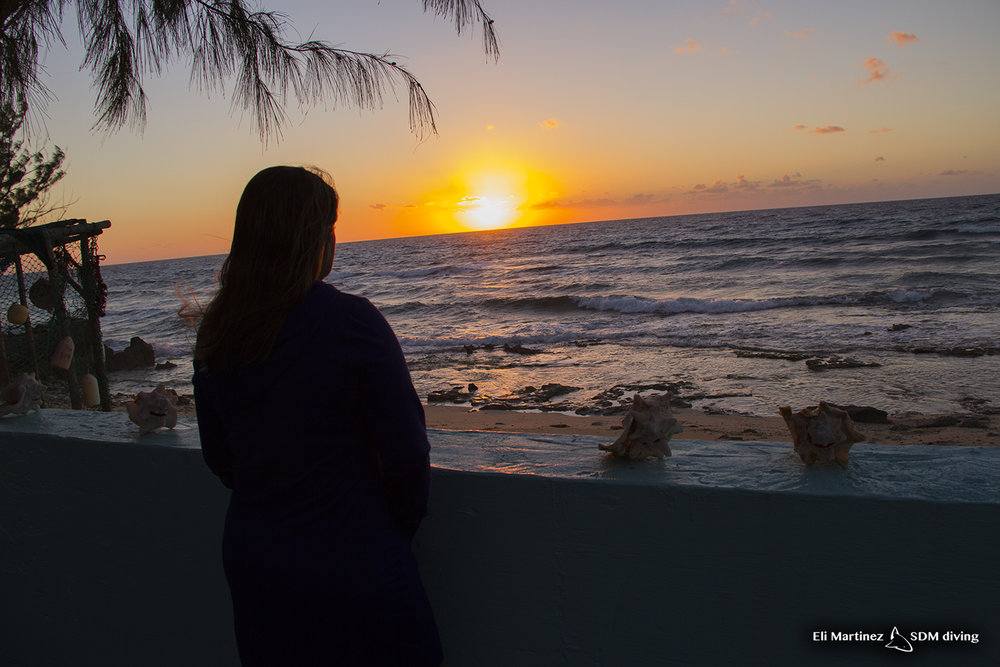 My wingman Mari, watching the sunset off our back porch. I fell in love with this pic of her, one of my most favorite sunset pics with my partner in crime.