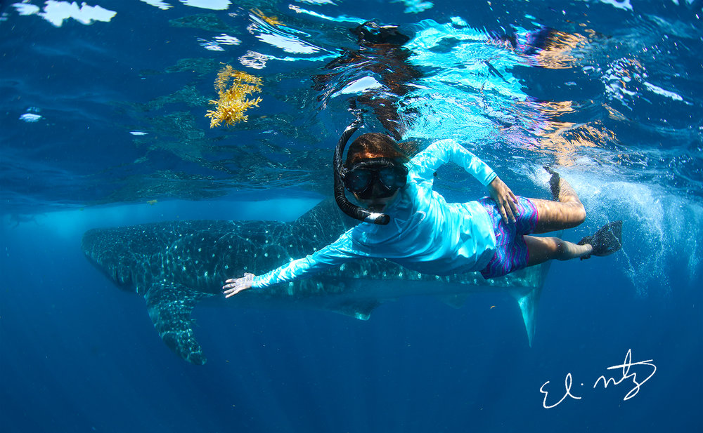 whale shark and sophia.jpg