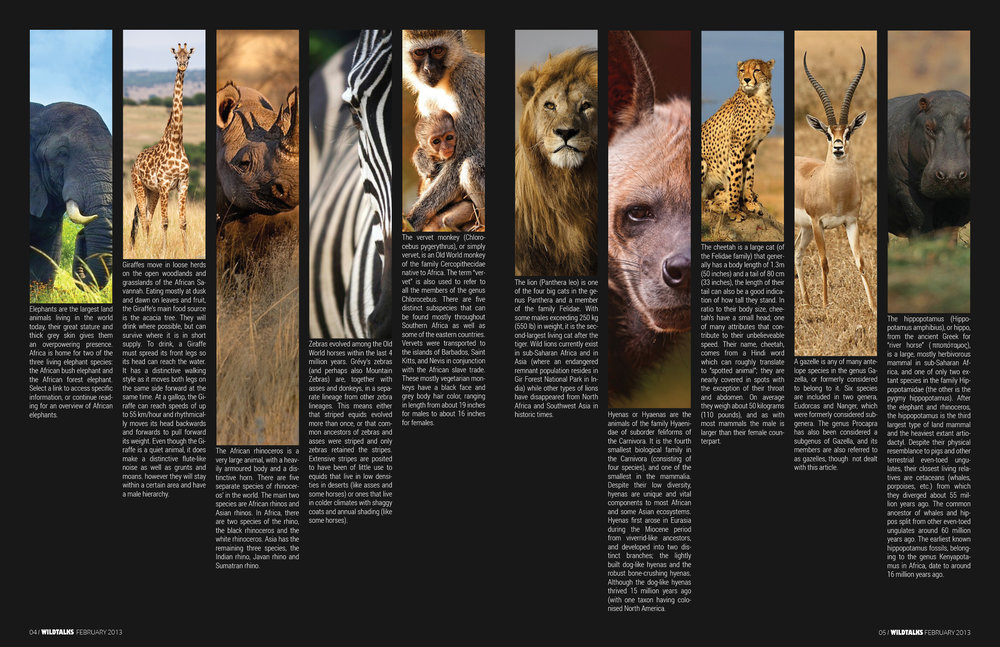 magazine_double_page_spread_by_rayle1112-d5y7suo.jpg