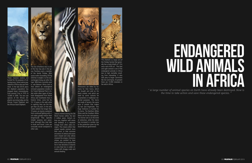 magazine_double_page_spread_by_rayle1112-d5y7s4b.jpg