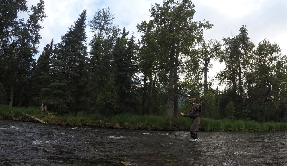 The Russian River in    Cooper Landing    is one of the most famous rivers in the world, both for    salmon and trout fishing   . Dry fly action this day was unreal!