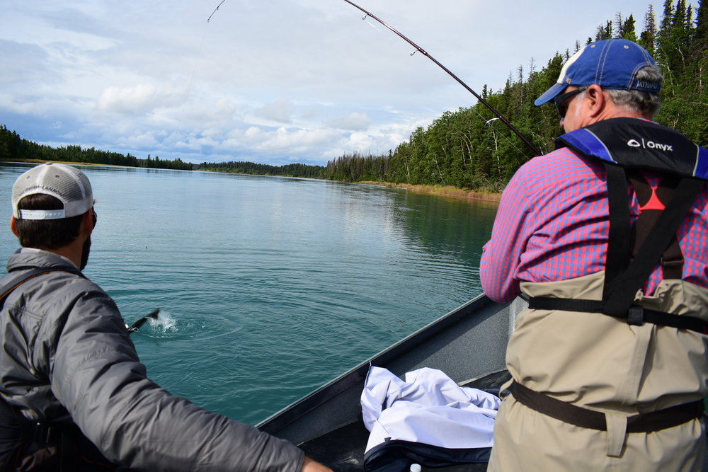 Casting for Silvers on a beautiful day on the    Middle Kenai River    in Sterling.