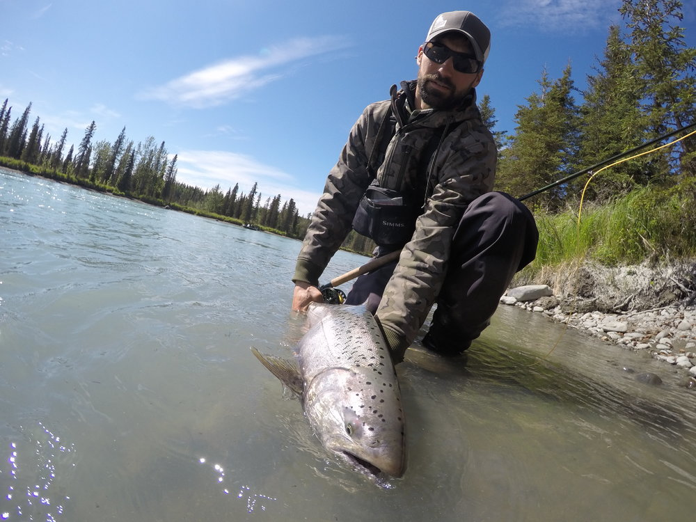 Using a spey rod to target Kings is a challenge, but can prove to be a very rewarding endeavor!