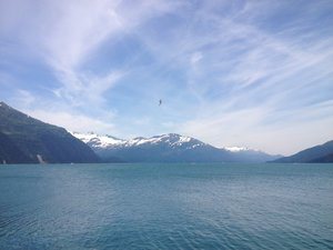 Explore Whittier, AK - Gateway to Prince William SoundSalmon Viewing PlatformsPortage Lake CruiseWhale Watching & Glacier CruisesHalibut, Salmon & Shrimp Fishing ChartersHistoric Town and HarborScenic Drive and Tunnel Experience