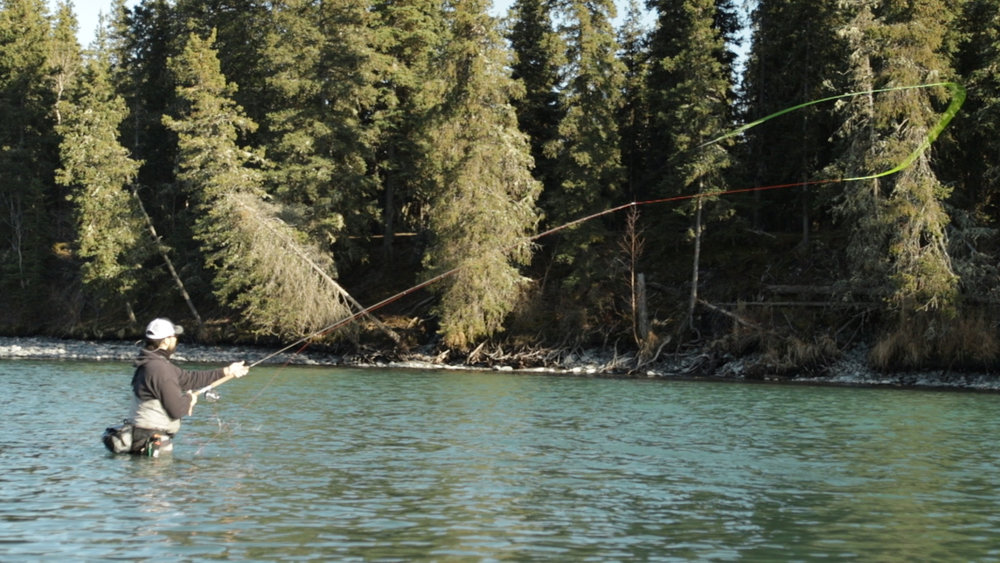 Head Guide Dave has been out almost every day testing the waters on the upper Kenai in Cooper Landing, AK.