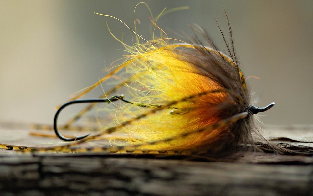 The Trout Spey Squidro Fly is simple to tie and very deadly for Rainbow Trout fishing in Alaska!