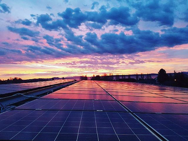 A beautiful sunrise over solar panels on one of our projects ☀️ . . . . #renewableenergy #solar #greenenergy #britishcolumbia #westcoast #hightideenergy