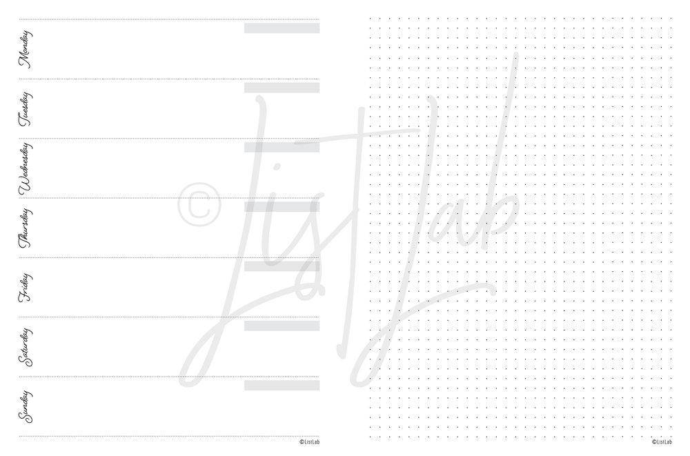script_disc_classic_undated-08.jpg