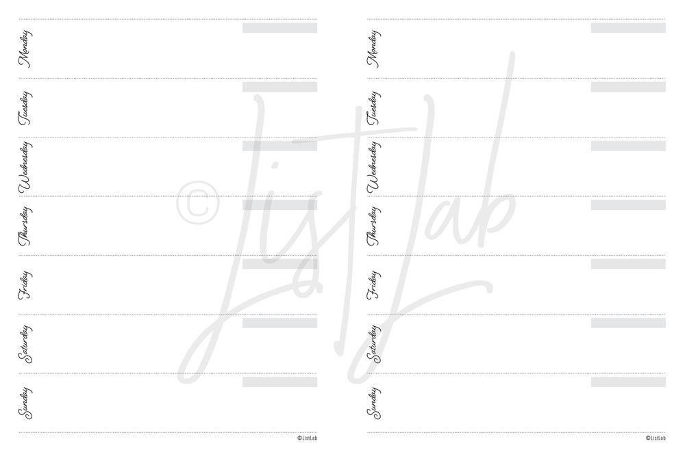 script_disc_classic_undated-06.jpg